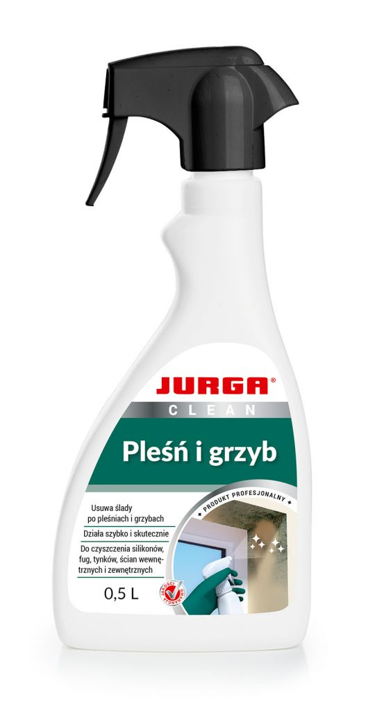 CLEAN PLEŚŃ I GRZYB